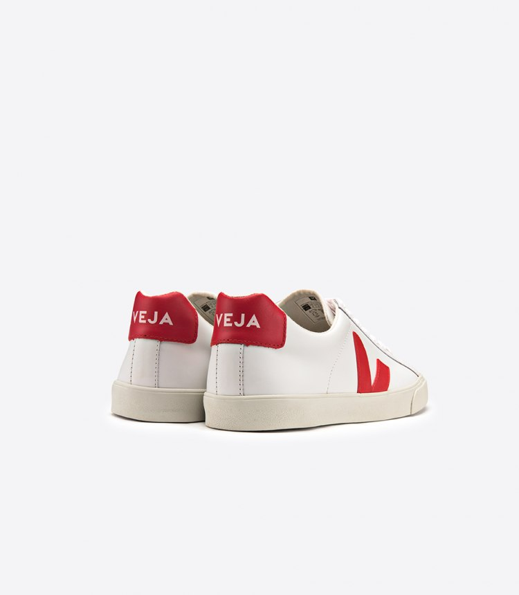veja_eo021242_esplar_leather_extra-white_pekin_back.jpg