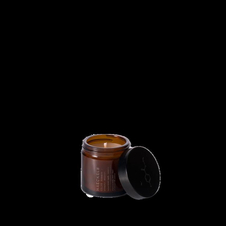 haeckelscliffbreeze-1024x1024.png