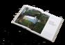 homeupgrade_gestalten_book_home_interior_inside06_2000x.png